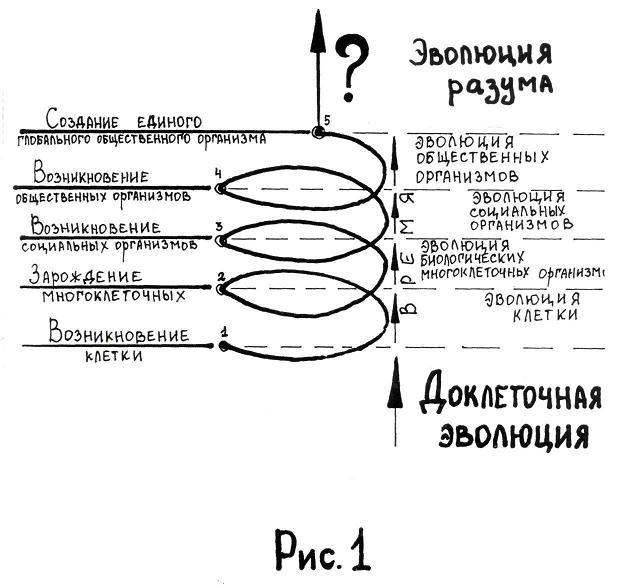 Спираль эволюции